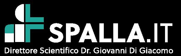 Logo spalla